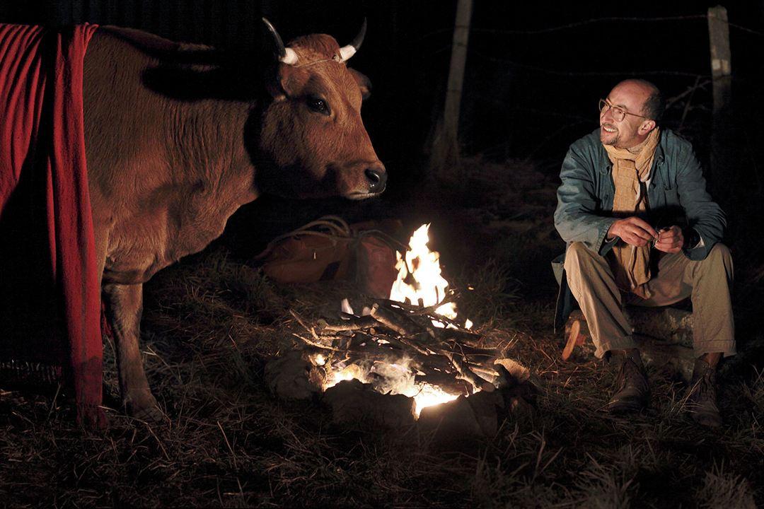 La vaca: Fatsah Bouyahmed