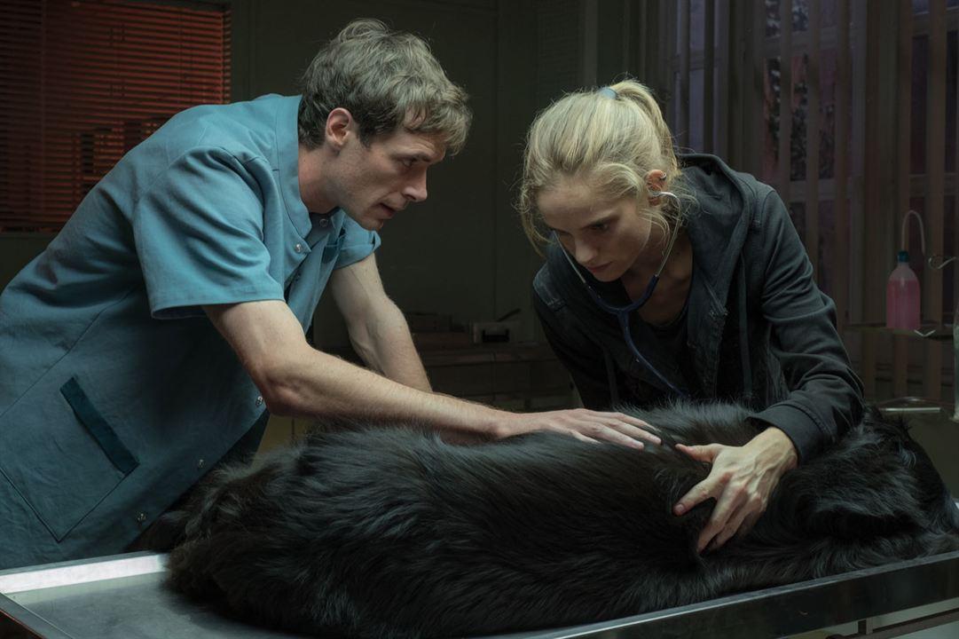 Una veterinaria en la Borgoña: Clovis Cornillac, Noémie Schmidt