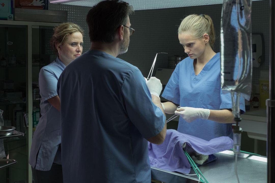 Una veterinaria en la Borgoña: Carole Franck, Noémie Schmidt